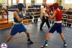 Турнир по боксу, посвященный памяти боксёров города Фокино, 2016 г