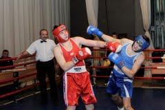 Чемпионат и первенство Брянской области по боксу, 2012 г.