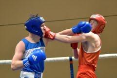 Кубок Брянской области по боксу 2015