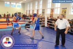 Турнир по боксу в рамках III юношеских игр боевых искусств Брянской области, 2015 г.